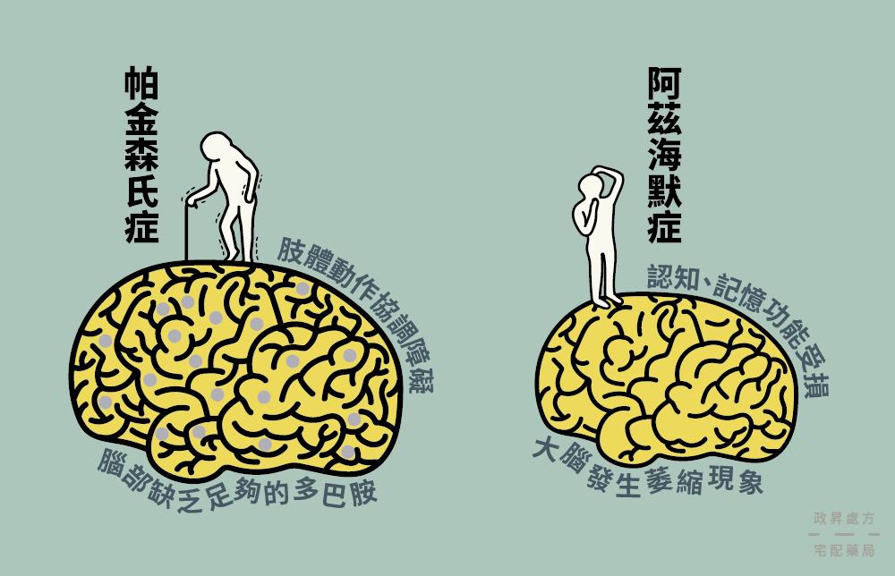 帕金森氏症與阿茲海默症的大腦功能比較