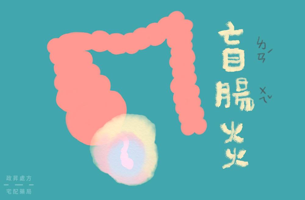 盲腸炎封面